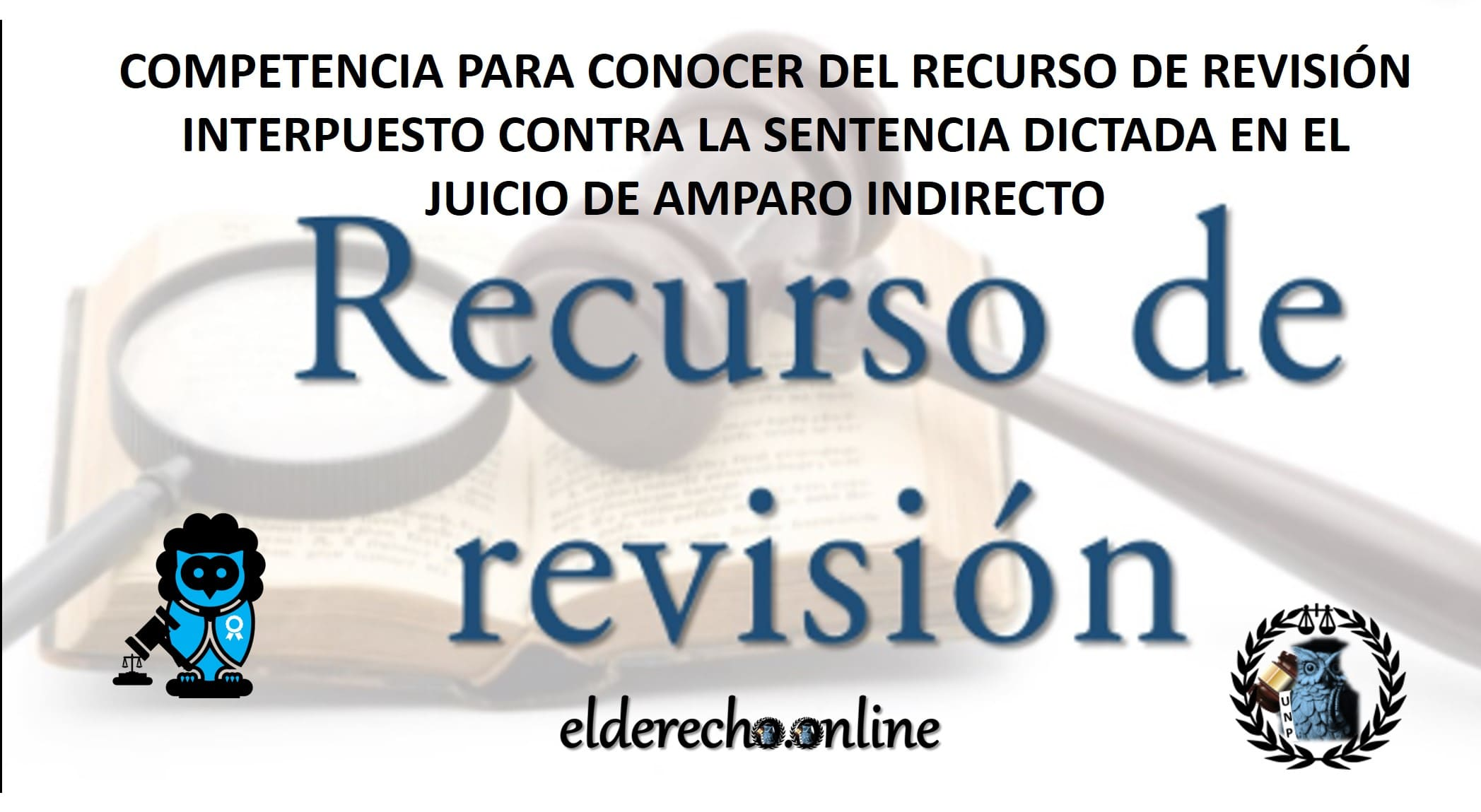 Photo of Recurso de Revisión – Jurisprudencia Constitucional