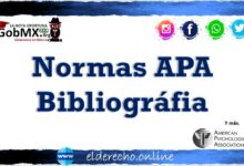 Photo of Normas APA Bibliográfia