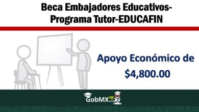 Photo of Beca Embajadores Educativos-Programa Tutor-EDUCAFIN