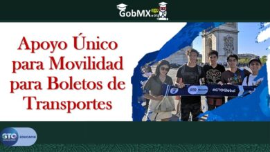 Photo of Apoyo Único para Movilidad para Boletos de Transportes