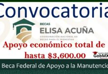 Photo of Beca Federal de Apoyo a la Manutención